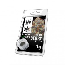 Blueberry jelly hash CBD 22%