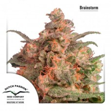 Brainstorm - Dutch Passion