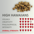 Magic Truffles High Hawaiians / Tampelandia