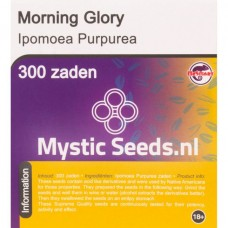 Morning Glory semen